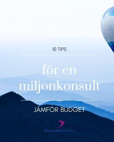 10 tips för en miljonkonsult - budget